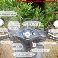 Как управлять скутером в Таиланде?