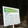 Надписи на территории