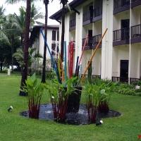 Пальмы и кокосы