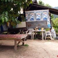 Тайцы прячутся в лесу