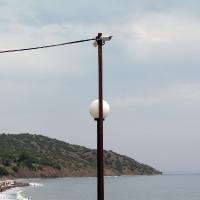 Видеокамера и море