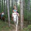 В чаще с лошадью