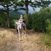 Прогулка в горах