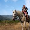 На лошади у виноградника