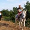 Массандровский виноград