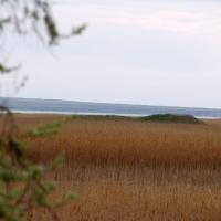 Вид на море из пробки