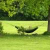 Гамак в парке