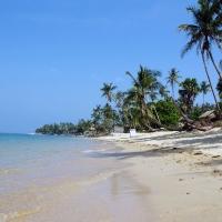 Пальмы на пляже Маэнам
