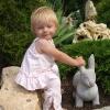 Заяц окаменел