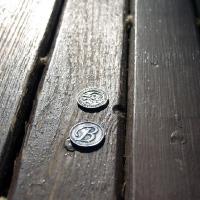 Монета в Воронцовский дворец