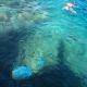 Кораллы под водой